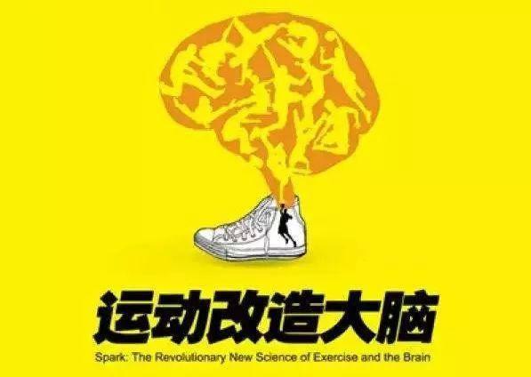 约翰·瑞迪《运动改造大脑》读书笔记.jpeg